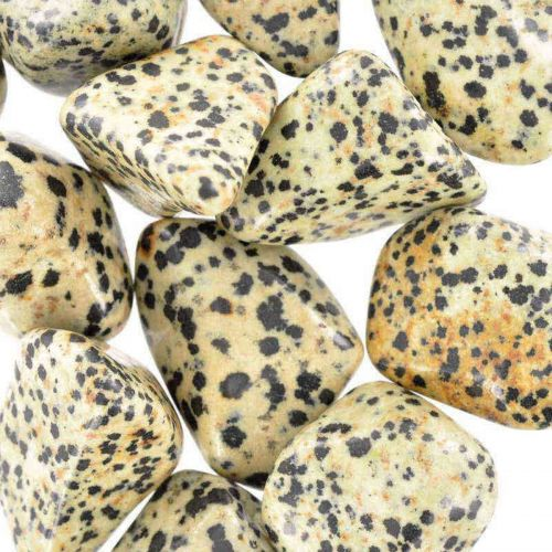 Poids du lot de jaspe dalmatien : 250 gr. 12 pierres env