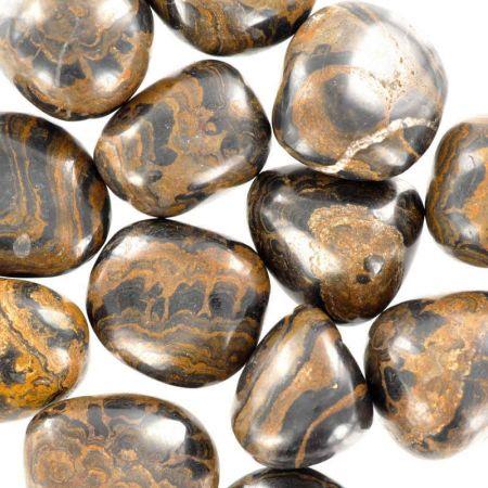 Poids du lot de stromatolite: 250 gr. 13 pierres env