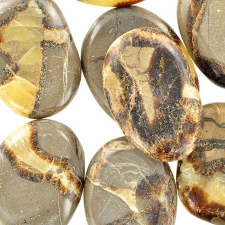 Poids du lot de septaria : 250 gr. 9 pierres