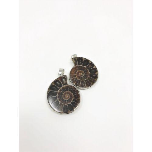 Pendentifs Ammonite